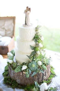 Fall Wedding; Rustic Cake Design with Succulents; Willor Tree Cake Topper; Wooden Base; Cool Cakes by Lindsay; Southern Wedding; Oak Level Farm