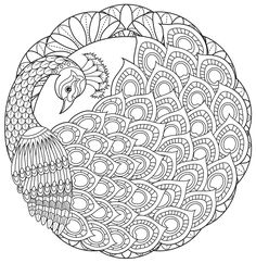 ru / Фото - Coloring Bird Mandalas Adult Coloring Book by Wendy Piersall - tymannost Cute Coloring Pages, Mandala Coloring Pages, Coloring Books, Adult Coloring, Peacock Coloring Pages, Colouring, Peacock Drawing, Peacock Art, Peacock Sketch