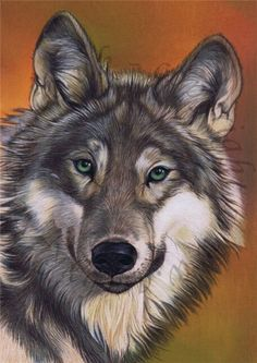 Wolf diamond painting 40x60cm