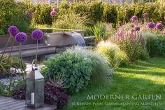 moderner Garten mit  Blumenzwiebeln -  im Herbst den Frühling pflanzen Beispiele für harmonische Zwiebelpflanzungen im Garten mit Allium
