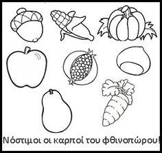 autumn+fruits.jpg (300×284)