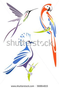 Stylized birds - scarlet macaw, crimson topaz and victoria crowned pigeon by Egret77, via Shutterstock