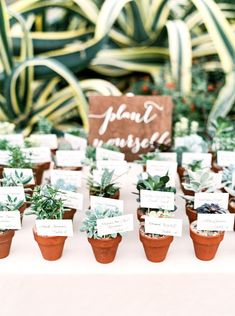 A Natural Elegant Greenhouse Wedding Plant Escort Cards Wedding Plants, Wedding Favor Table, Succulent Wedding Favors, Creative Wedding Favors, Wedding Favors For Guests, Wedding Place Cards, Wedding Ceremony, Natural Wedding Favors, Wedding Favour Plants