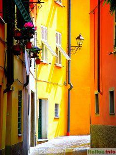 Sarzana (SP) - Liguria, Ligurien - Italy, Italien - Bright colors in an alley - Farbenpracht in einer Gasse - More at: http://www.italien.info/impressionen