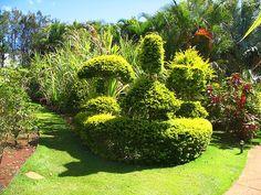 green gardens - Google zoeken