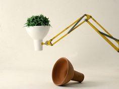 Look! Swing-Arm Lamp as Planter