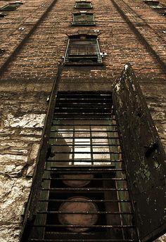 Buffalo Trace distillery, Frankfort, Ky. Buffalo Trace, Ohio River, Distillery, Bourbon, Railroad Tracks, Kentucky, Trail, Bucket, Horses