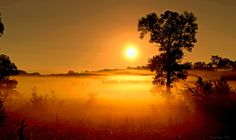 September wakes by Mark  Hopper on 500px