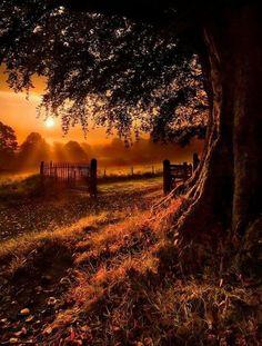 Ireland sunset in Autumn! It's so beautiful! <3