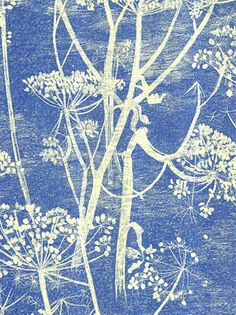 Buy Citrus, Cole & Son Cowparsley Wallpaper from our Wallpaper range at John Lewis & Partners. Cole And Son, Blue Wallpapers, Blue Backgrounds, Craft Clay, Paper Craft, Textures Patterns, Print Patterns, Floral Patterns, Chinoiserie