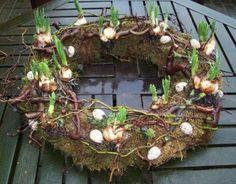 Spring creation