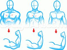 how to draw a body for beginners step 2