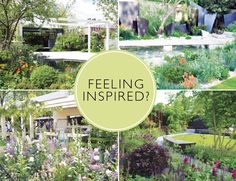 Win a Harrod Horticultural arch | Gardens Illustrated
