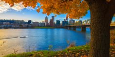 Portland Real Estate and Community News