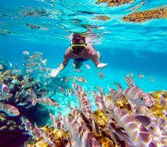 Áreas de mergulho