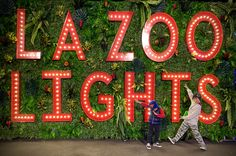 Los Angeles Zoo, Zoo Lights, Meet Santa, Laser Show, Interactive Display, Pajama Party, Signature Cocktail, Disco Ball, Twinkle Twinkle