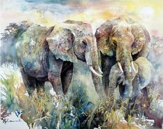 Lians painting : elephants wc