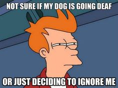The answer is they're always ignoring me, unless I say treat or walk. Then they have perfect hearing.