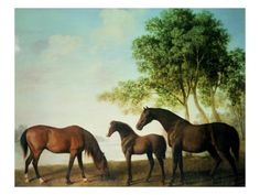 Shafto Mares and a Foal Giclee Print by George Stubbs