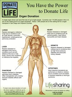 You Have the #Power to #Donate #Life - #Happy #Organ #Donation Day