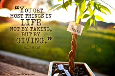 """""""You get most things in life not by taking, but by giving.""""Bryant McGill    Photo by Jenni Young"""
