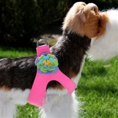 Small Dog Harness - Susan Lanci Fantasy Flower Step in Harness in Perfect Pink features multi-layered, colorful flower with Swarovski crystal accent.