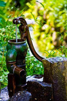 井戸のポンプ Bird Feeders, My Style, Outdoor Decor, Gardens, Water, Teacup Bird Feeders