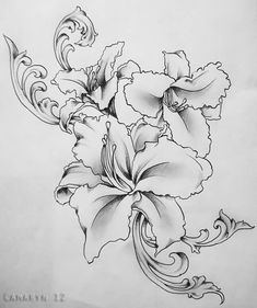 gladiolus flower tattoo drawing - Recherche Google