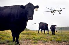 Using Drones in Agriculture | drones or unmanned aerial vehicles uav are military aircraft currently ...