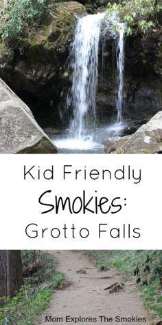 Great Smoky Mountains, Smoky Mountains Hiking, Smoky Mountains Tennessee, Zoo Park, Gatlinburg Vacation, Gatlinburg Tennessee, Tennessee Usa, Tn Usa, Tennessee Vacation Kids