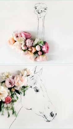 It is a flower to an ostrich and a horse