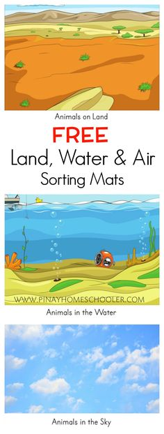 Free sorting mats for land, water and air animals zoo activities, file folder activities File Folder Activities, Sorting Activities, Animal Activities, Hands On Activities, Kindergarten Activities, Science Activities, Toddler Activities, Folder Games, Airplane Activities