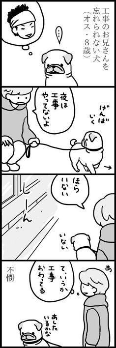よしこ(めー語) (@menglish222) さんの漫画 | 657作目 | ツイコミ(仮) Funny Cats, Funny Pictures, Manga, Cute, Animals, Fanny Pics, Animales, Animaux, Funny Pics