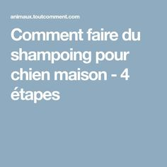 Comment faire du shampoing pour chien maison - 4 étapes Education Canine, Hygiene, Dog Bed, Diy, Cat Shampoo, How To Make Shampoo, Dog Shampoo, Homemade Shampoo, Stuff Stuff