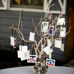 Family tree with photos tied to the branches of those unable (or deceased) to make it to the wedding. #reception