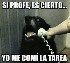 """Top LOL Memes En Espanol Memes That will make you laugh and funny for whole day.So scroll down and read out these """"Top LOL Memes En Espanol"""" and i'm sure these """"Top LOL Memes En Espanol"""" will make you laugh out loud. Cool Memes, New Memes, Memes Humor, Funny Quotes, Funny Memes, Hilarious, Comic Foto, Whatsapp Videos, Hilarious Memes"""
