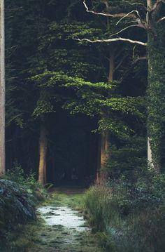 My inner landscape