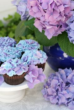 Blue and purple hydrangeas, with matching cupcakes