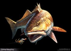 Fish Art by Tommy Kinnerup, via Behance