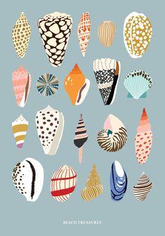 Seashells - Kajsa Kl