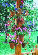 Hang-A-Pot - Decorating Ideas