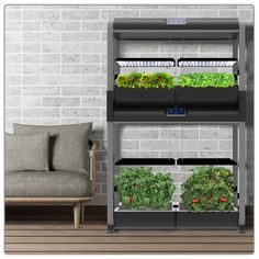 Home Lohas Brings Hydroponic Gardening Into Your Room 640 x 480