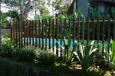 Timber batten pool fence detail #formedgardens
