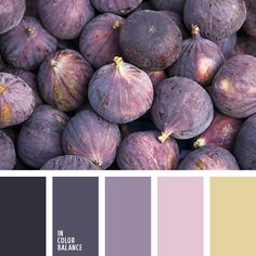 Gray, aubergine, pink, sand - this palette is the result of a harmonious fusion of stylish colors, which are headed lists the latest fashion trends, and massively used in clothing.