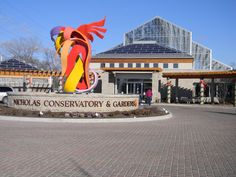 Nicholas Conservatory in Rockford, IL. A great place to go on a cold winter day or any day for that matter.