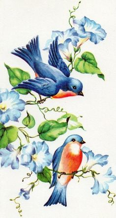 bluebird  (my tattoo in honor of my mom is a bluebird with heavenly blue morning glories! - JK)