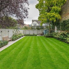 Family garden design in Barnes West London, lawn space as possible for various p. - Family garden design in Barnes West London, lawn space as possible for various play activities and -