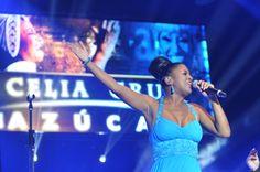 El cierre del Festival Internacional de la Salsa se caracterizó por el cálido ambiente, los aplausos, ovaciones y pasos de baile que no se hicieron esperar por parte del público que coreó los más exitosos temas de la gran Celia Cruz interpretados por la Orquesta All Stars que lleva su nombre.