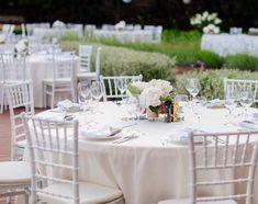 White Chiavari Wedding Chairs Rental Toronto