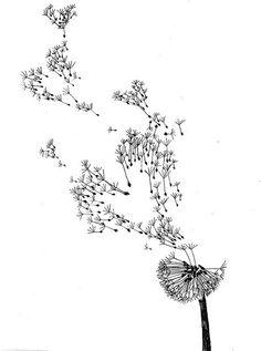 dandelions sketch: